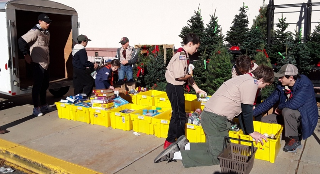 Scouts sorting food